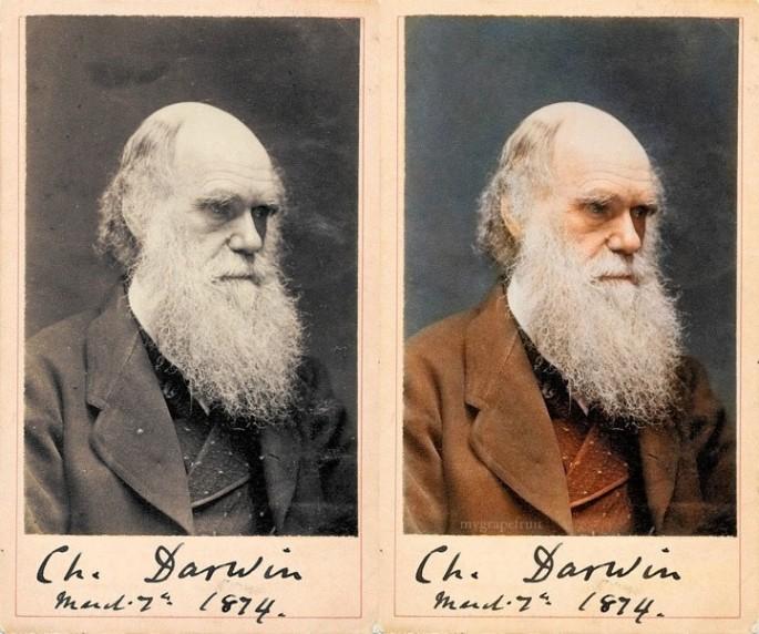 CHARLES DARWIN, ca. 1874